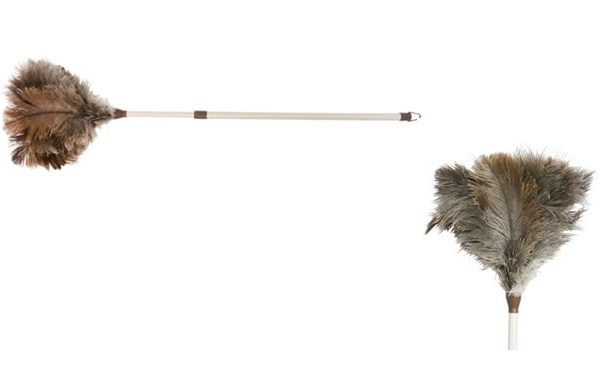 Plumero avestruz extensible